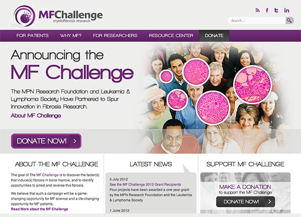 MF Challenge Chicago Web Design